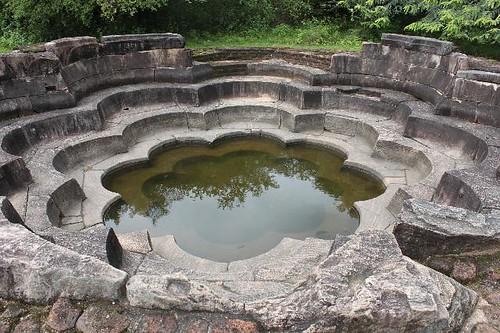 20130113_6953-Polonnaruwa-lotus-pond_Vga