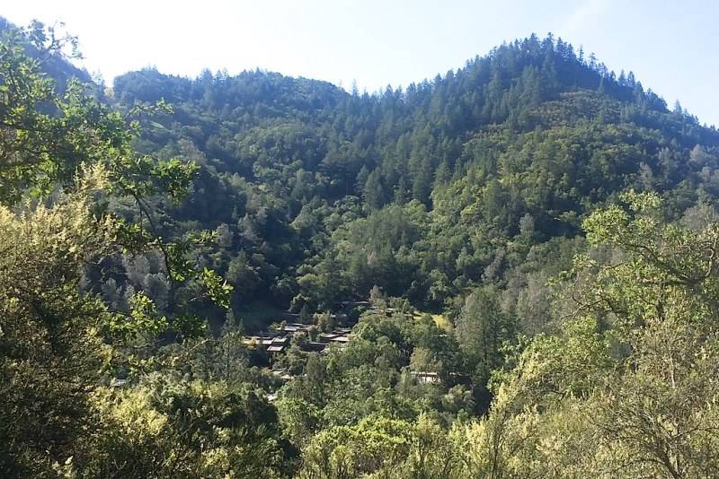 Hiking view at Calistoga Ranch