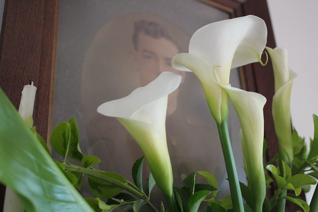 Sunday: old family portraits and lillies