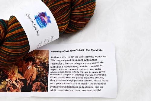 Herbology Class Yarn Club #1