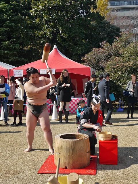mochi daikai