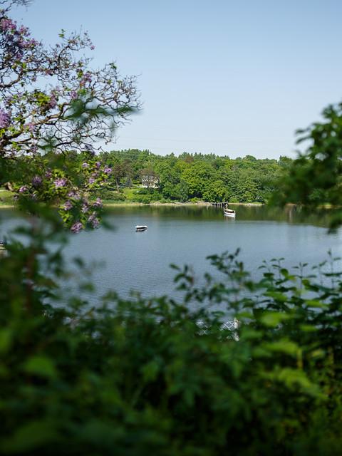 View from Bergius Botanic Garden