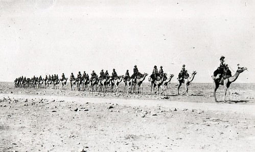 Column of Camel Mounted Troops