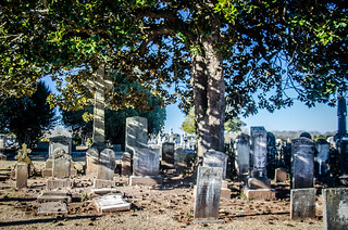 Upper Long Cane Cemetery and Church-020