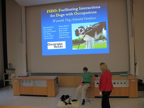 Eagerly waiting for FIDO: Ficilitating Interactions for Dogs with Ocupations