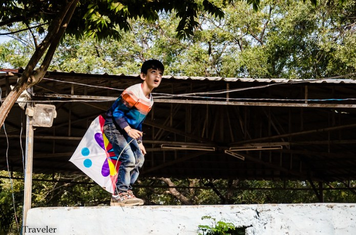boy with kite climbing tree