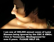 300,000+ Lyme Media Campaign