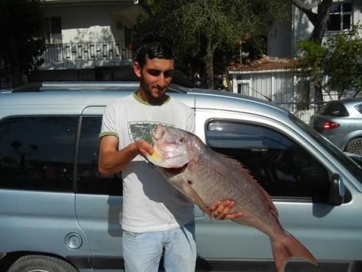 Summer 2012 - Europe, D3 Dikili, Turkey - 24