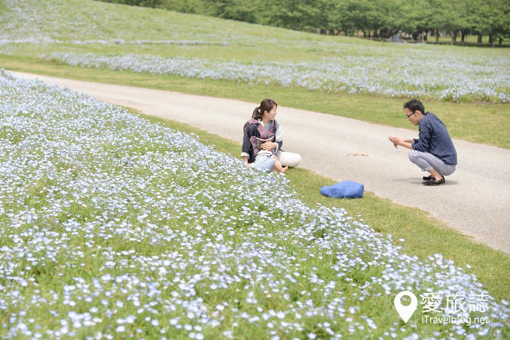 《福冈景点推介》海之中道海滨公园:福冈亲近大自然的亲子景点与游乐区