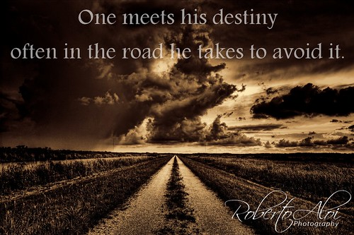 One meets his destiny often in the road he takes to avoid it. by Roberto_Aloi