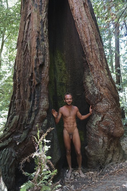 naturist 0009 Big Basin Redwoods, CA, USA