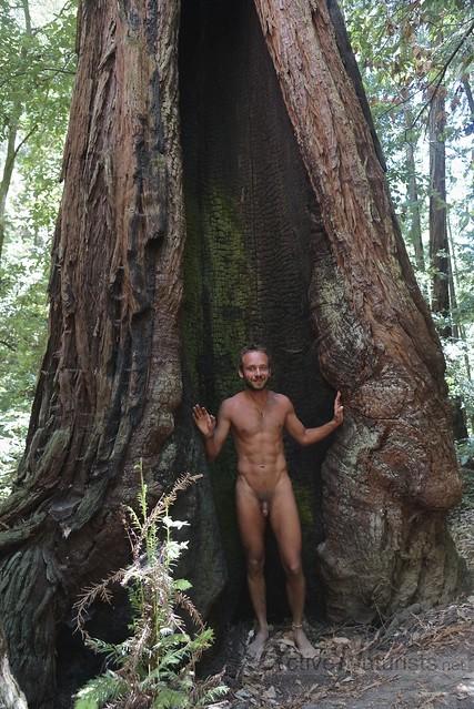 naturist 0009 Big Basin Redwoods, CA, USA