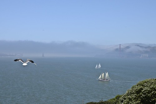 June7-AlcatrazView1b