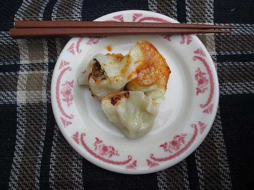 dumpling picnic