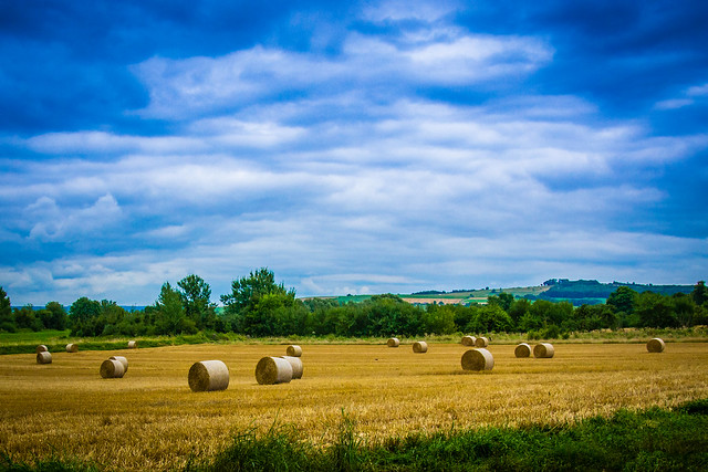 Lansdscape image of hay bails in field outside of Stenay, France.