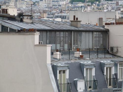 Tin & Slate rooftops of Paris