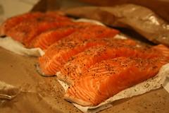 Salmon Stk