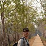 12 Templos de Angkor Big 16