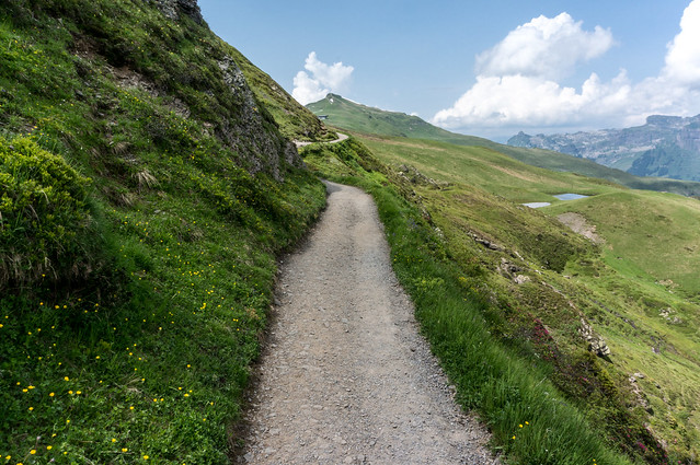 Bernese Alps - The path to the Mannlichen (II)