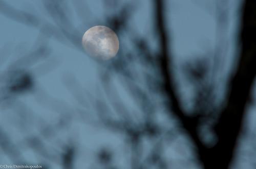 Moon by s1nano