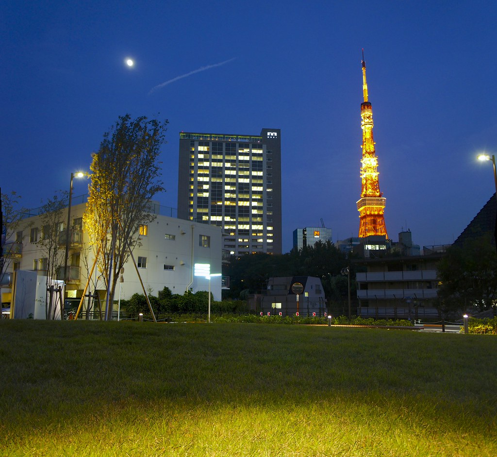 Tokyo Tower at Blue Hour