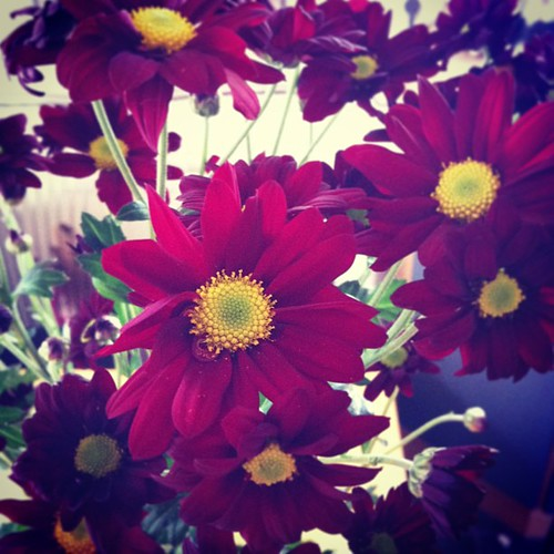 I got flowers