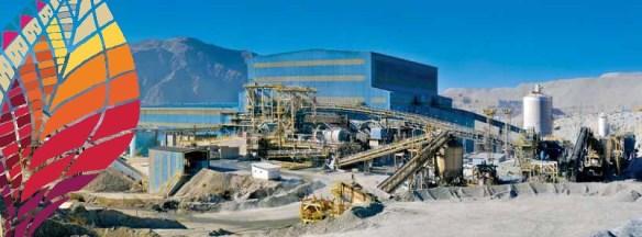 Minera Alumbrera, Contribución económica