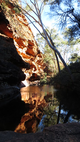 kings canyon watering hole