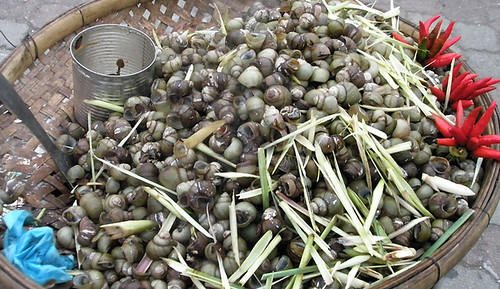 Snails with Lemongrass and Chiles