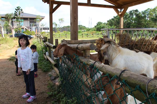 Clare的生活品味(臺灣旅遊): 【新竹關西】秘探六福村野生動物園