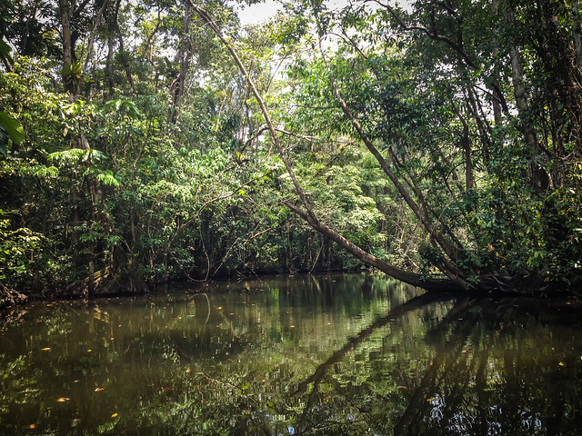 Exploring Rio Dulce-10