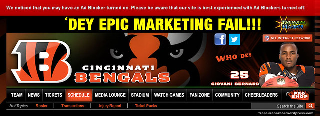 Cincinnati Bengals Tell Fans Not To Block Web Ads