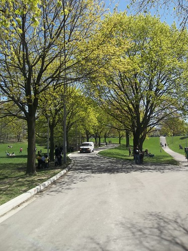 Christie Pits, May 2013 (3)