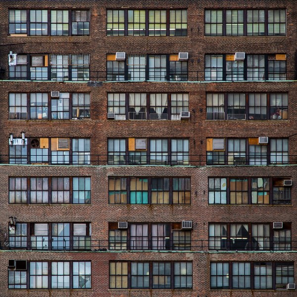 301/365 Urban Beehive