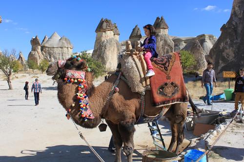 IMG_7608-Pasa-bagi-fairy-chimneys-camel