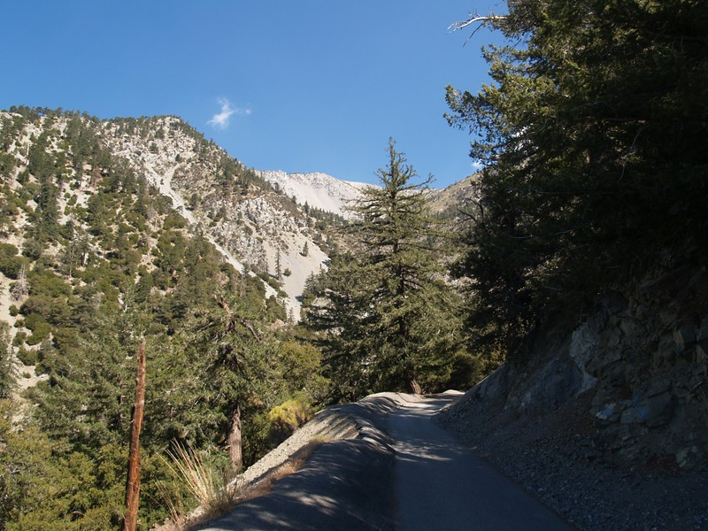 Looking back up at the Baldy Bowl from Falls Road.