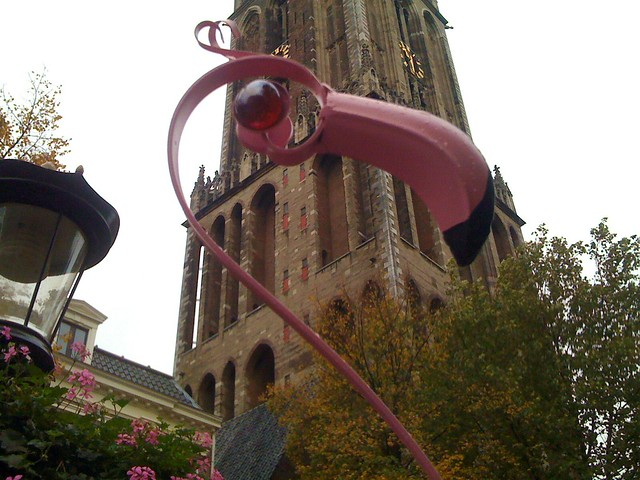 A Flamingo in Utrecht