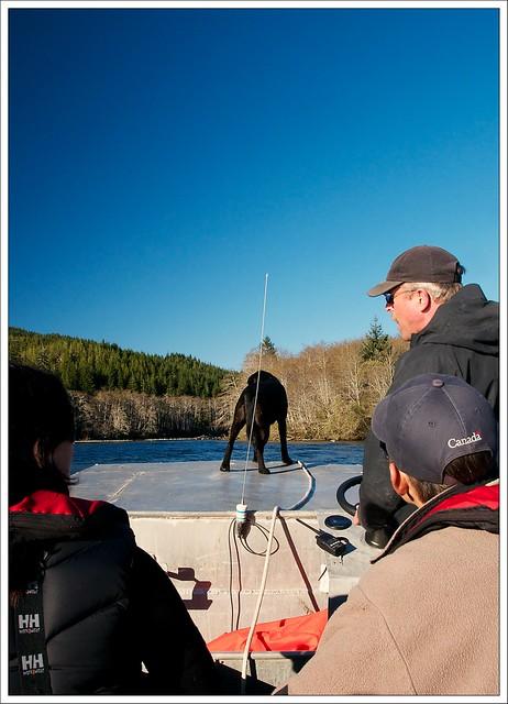 Boating on Nitinat Lake