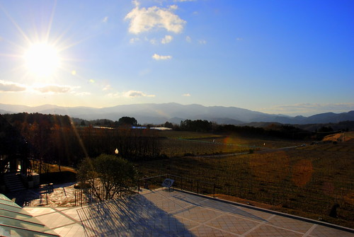 Nakaizu Winery and Hotel 003r