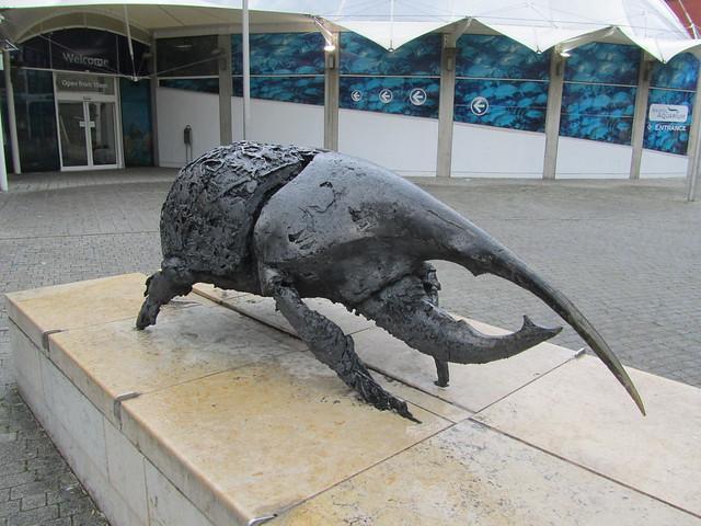 Beetle Statue