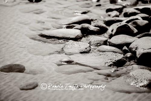 20130519-328C0558-Edit-WM by {Pamela Zmija Photography}