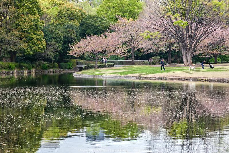 北之谷公園