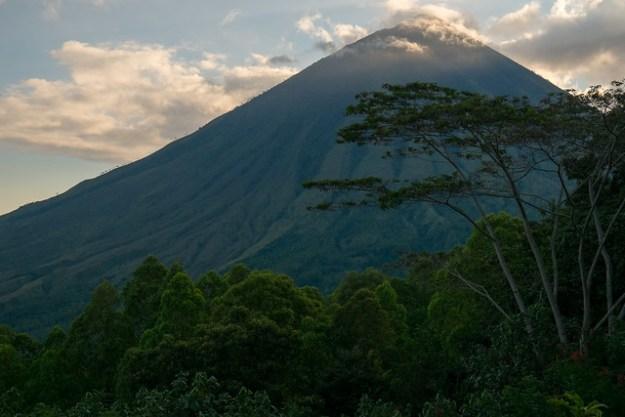 Green afternoon. Gunung Inerie