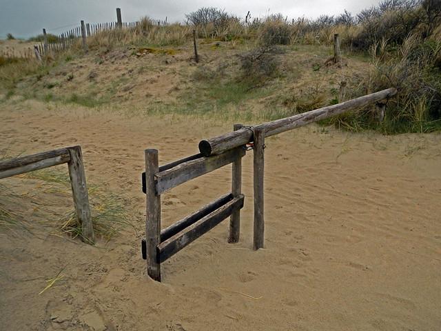 12apBelDePannedStaatsnatuurreservaat De Westhoek, a dunes & nature reserve near De Panne, Belgiumunesfence6954w
