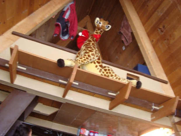 zelda captures the giant giraffe