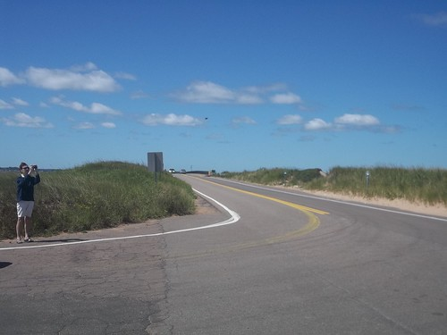 Driven to Covehead (3)