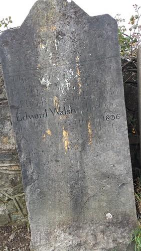 Edward Walsh