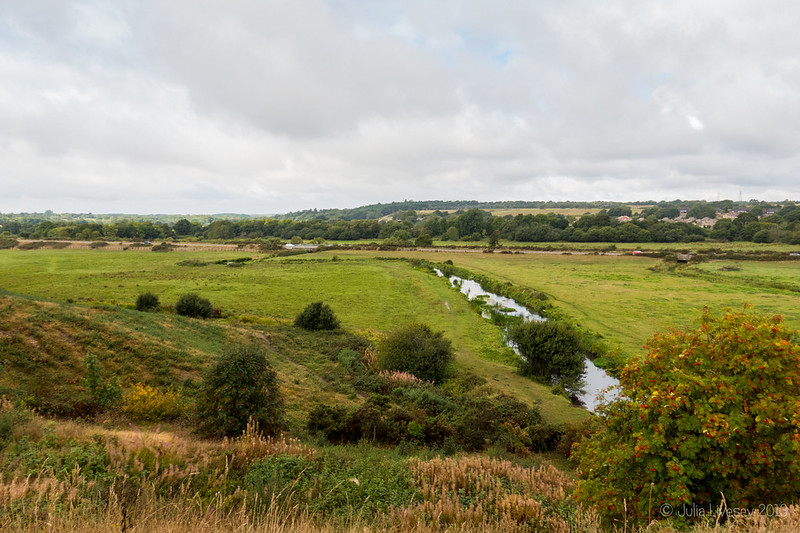 River Piddle from the North Walls