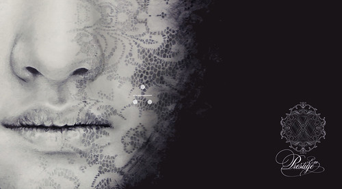 EXO Prestige - Detail