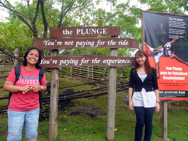 at the plunge